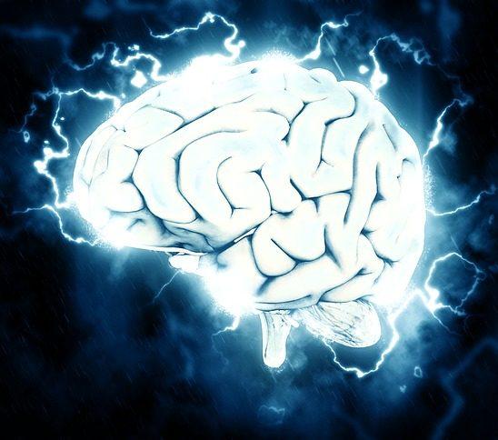 brain 1845962 640 e1512820256584